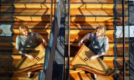 Hedi Viisman taiteellinen jatkotutkinto: Kromaattinen kantele mahdollisuuksien pelikenttänä